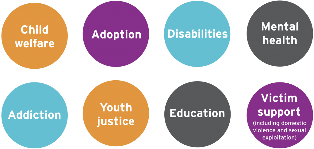 • Child welfare • Adoption • Disabilities • Mental health • Addiction • Youth justice • Education • Victim support (including domestic violence and sexual exploitation)